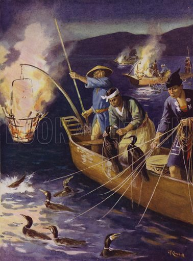 Chinese fishermen using cormorants to catch fish at night. Illustration from The Wonder Book of Would You Believe It? (Ward, Lock & Co, Limited, London and Melbourne, c1940).