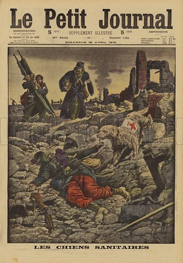 Using rescue dogs to search for wounded, France, World War I, 1915. Les chiens sanitaires. Illustration from Le Petit Journal, 18 April 1915.