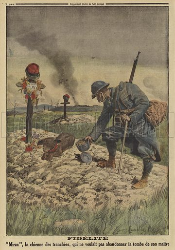 """Loyalty: French army dog refusing to leave the grave of her dead master, World War I, 1916. Fidelite. """"Mirza"""", la chienne des tranchees, qui ne voulait pas abandonner la tombe de son maitre. Illustration from Le Petit Journal, 10 September 1916."""