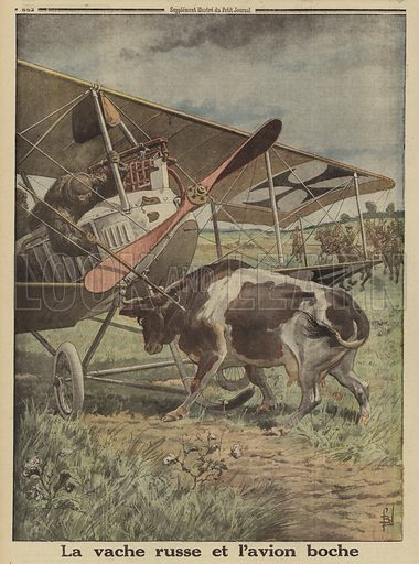 Cow preventing a German aircraft from taking off, Lutsk, Russia, World War I, 1916. Illustration from Le Petit Journal, 22 October 1916.