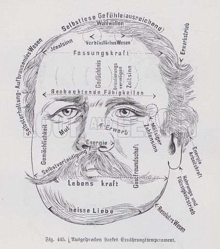 Reading of a person's face to determine their temperament. Illustration from Universum des Himmels, der Erde und des Menschen (F E Bilz, Dresden-Radebeul and Leipzig, c1925).