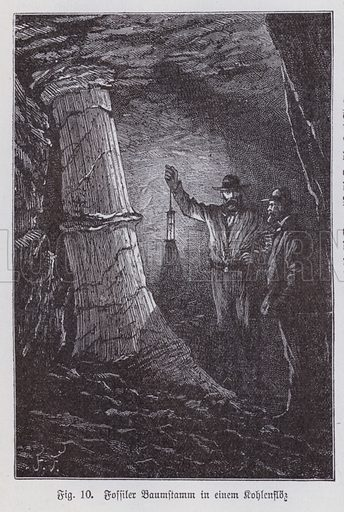 Fossilised tree trunk in a seam of coal in a mine. Illustration from Universum des Himmels, der Erde und des Menschen (F E Bilz, Dresden-Radebeul and Leipzig, c1900).