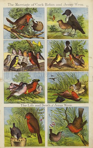 The Marriage Of Cock Robin And Jenny Wren.  Illustration for The Prince of Nursery Playmates (Sampson Low, c 1885).