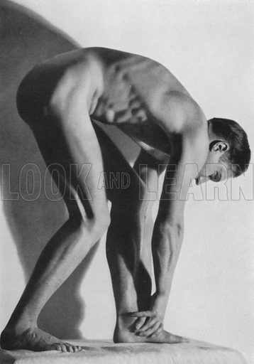 Illustration for The Male Body