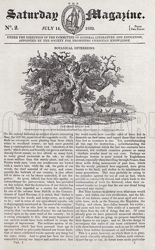 The great Salcey Oak. Illustration for The Saturday Magazine, 14 July 1832.