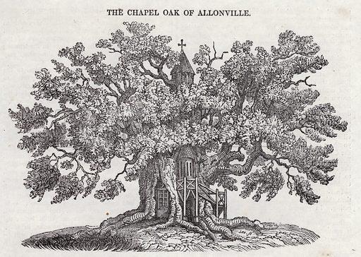 The Chapel Oak of Allonville.  Illustration for The Saturday Magazine, 22 September 1832.