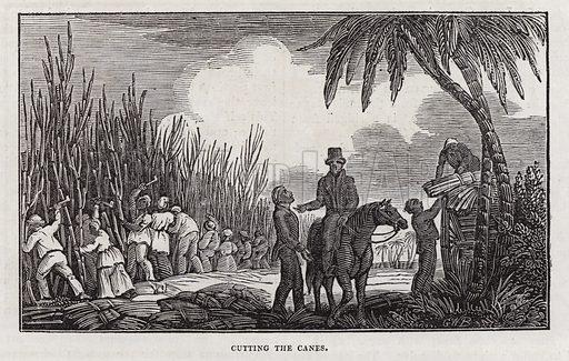 Sugar production. Illustration for The Saturday Magazine, 8 June 1833.