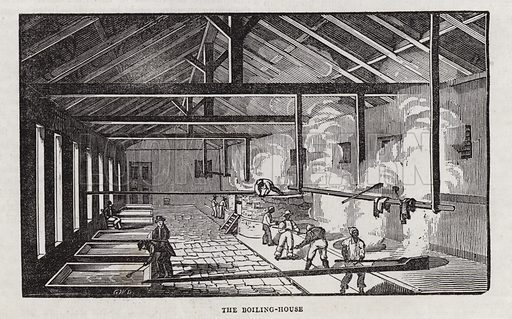 Sugar production.  Illustration for The Saturday Magazine, 8 June 1833.