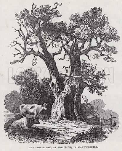 The Gospel Oak, Stonleigh, Warwickshire. Illustration for The Saturday Magazine, 3 August 1833.