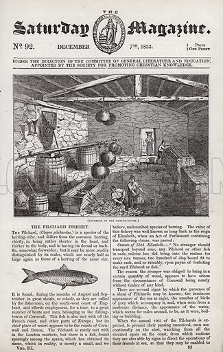 Pilchard fishery.  Illustration for The Saturday Magazine, 7 December 1833.