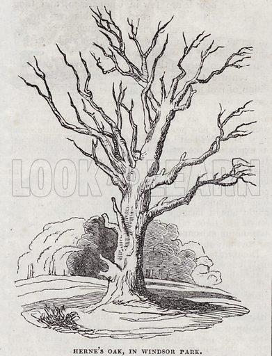 Herne The Hunter, Herne's Oak, Windsor Park.  Illustration for The Saturday Magazine, May 1834.