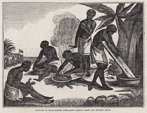 Natives of Madagascar preparing bread from manioc root.  Illustration for The Saturday Magazine, 19 July 1834.