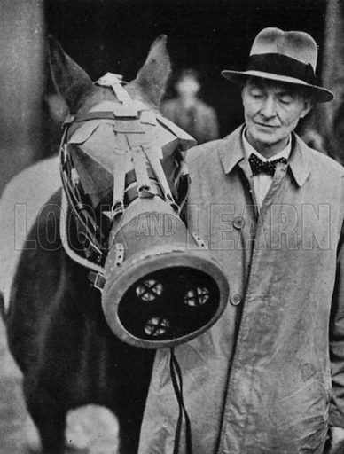 Gas mask for London horse, c 1941.