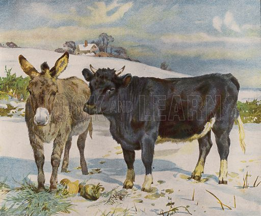Donkey and cow in the snow. Illustration from The Children's Farm, by L L Weedon (Nister & Co, Germany, c1900).