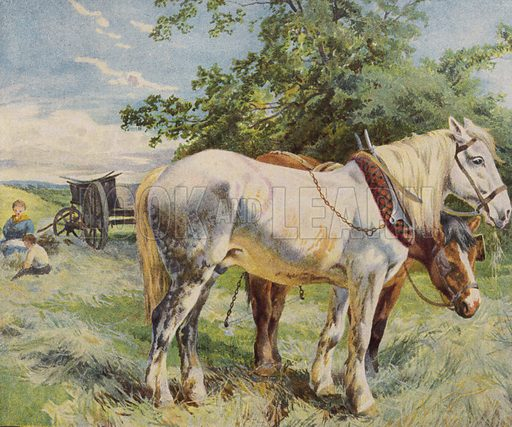 Horses taking a break from work on a farm. Illustration from The Children's Farm, by L L Weedon (Nister & Co, Germany, c1900).