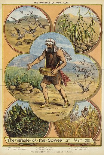 The Parables of Christ: The Parable of the Sower. Illustration from The Little One's Own Coloured Picture Paper (Dean and Son, c1890).