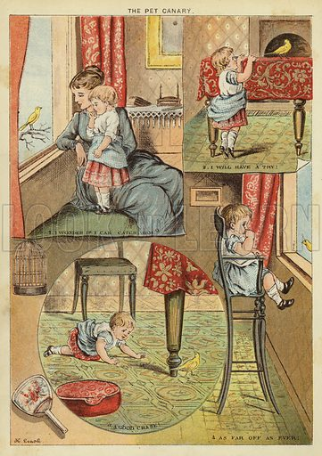 The pet canary. Illustration from The Little One's Own Coloured Picture Paper (Dean and Son, c1890).