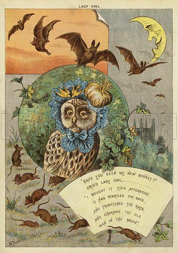 Lady Owl. Illustration from The Little One's Own Coloured Picture Paper (Dean and Son, c1890).