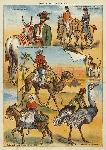 Animals used for riding. Illustration from The Little One's Own Coloured Picture Paper (Dean and Son, c1890).
