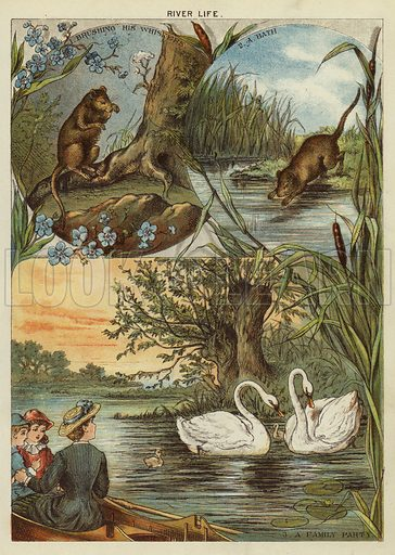 River life. Illustration from The Little One's Own Coloured Picture Paper (Dean and Son, c1890).