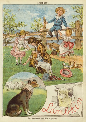 Lambkin. Illustration from The Little One's Own Coloured Picture Paper (Dean and Son, c1890).
