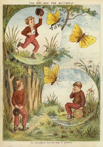 The boy and the butterfly. Illustration from The Little One's Own Coloured Picture Paper (Dean and Son, c1890).