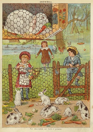 Snowball. Illustration from The Little One's Own Coloured Picture Paper (Dean and Son, c1890).
