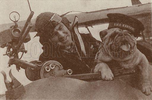 British pilot with the bulldog mascot of HMS Kestrel, the Royal Navy's Fleet Air Arm station at Worthy Down, …
