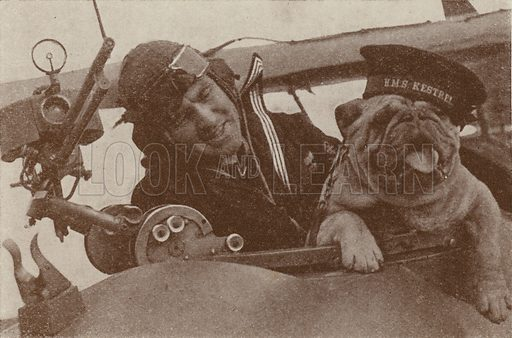 British pilot with the bulldog mascot of HMS Kestrel, the Royal Navy's Fleet Air Arm station at Worthy Down, Hampshire, 1939. Illustration from The Wonder Book of the RAF, edited by Harry Golding (Ward, Lock & Co, Ltd, London and Melbourne, c1945).