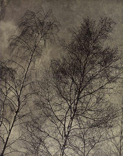 … their charm is writ Along a liquid sky, Robert Bridges. Illustration for A Book of Praise by Harold Burdekin (J M Dent, 1948).