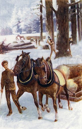 """Some engaged in felling trees, others with horses dragging the trunks, placed on sleighs, over the hard snow."" Illustration for Afar In The Forest by W H G Kingston (Thomas Nelson, c 1910)."