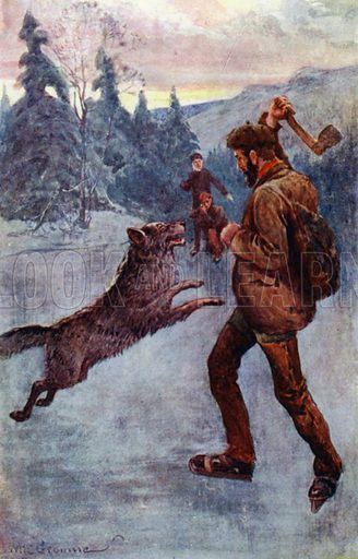 """""""He fired; and the brute, the moment that it was making its spring, fell over, snarling and hissing."""" Illustration for Afar In The Forest by W H G Kingston (Thomas Nelson, c 1910)."""