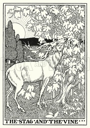 The stag and the vine. Illustration for A Hundred Fables of La Fontaine (John Lane, The Bodley Head, 3rd edn, c 1910).