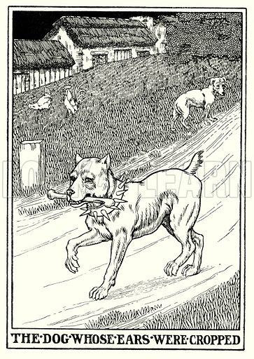 The dog whose ears were cropped. Illustration for A Hundred Fables of La Fontaine (John Lane, The Bodley Head, 3rd edn, c 1910).
