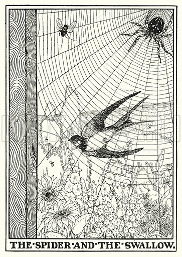 The spider and the swallow. Illustration for A Hundred Fables of La Fontaine (John Lane, The Bodley Head, 3rd edn, c 1910).