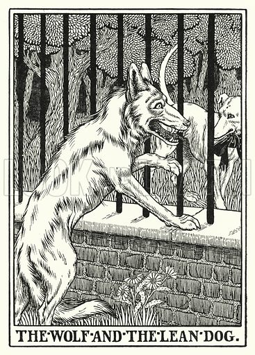 The wolf and the lean dog. Illustration for A Hundred Fables of La Fontaine (John Lane, The Bodley Head, 3rd edn, c 1910).