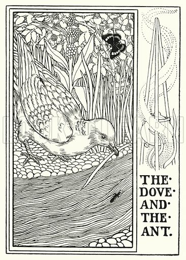 The dove and the ant. Illustration for A Hundred Fables of La Fontaine (John Lane, The Bodley Head, 3rd edn, c 1910).