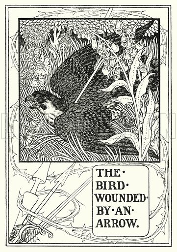 The bird wounded by an arrow. Illustration for A Hundred Fables of La Fontaine (John Lane, The Bodley Head, 3rd edn, c 1910).