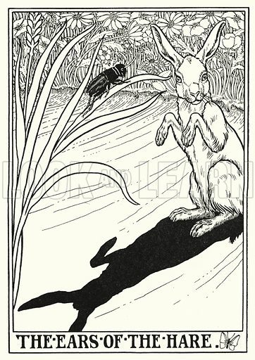 The ears of the hare. Illustration for A Hundred Fables of La Fontaine (John Lane, The Bodley Head, 3rd edn, c 1910).