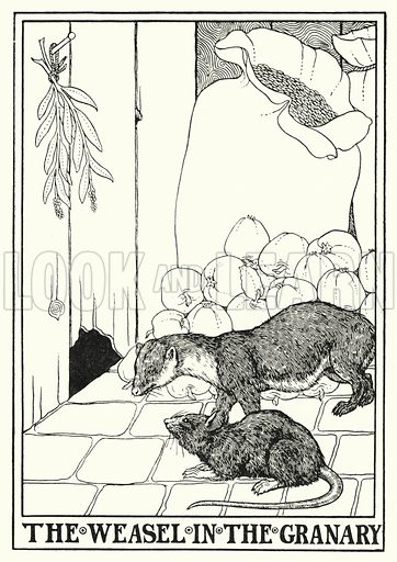 The weasel in the granary. Illustration for A Hundred Fables of La Fontaine (John Lane, The Bodley Head, 3rd edn, c 1910).