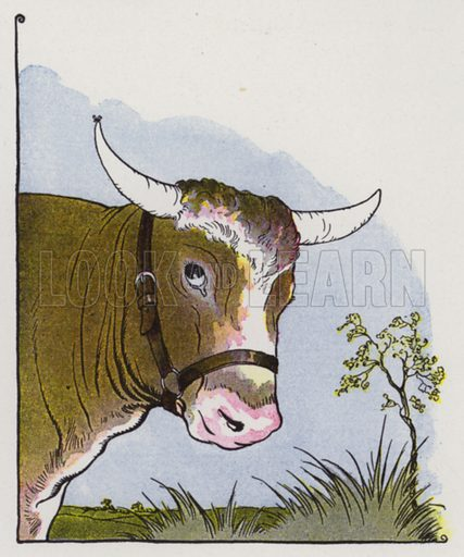 The Gnat and the Bull. Illustration for The Aesop for Children with pictures by Milo Winter (Rand McNally, 1919).