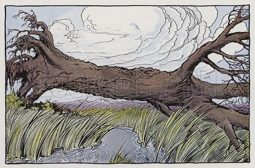 The Oak and the Reeds. Illustration for The Aesop for Children with pictures by Milo Winter (Rand McNally, 1919).
