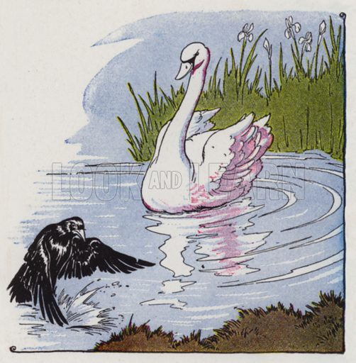 A Raven and a Swan. Illustration for The Aesop for Children with pictures by Milo Winter (Rand McNally, 1919).
