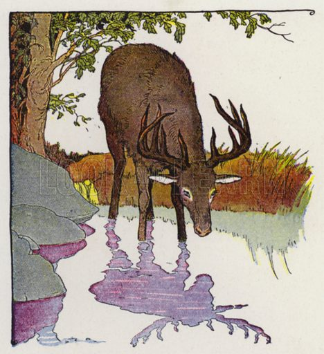 The Stag and His Reflection. Illustration for The Aesop for Children with pictures by Milo Winter (Rand McNally, 1919).
