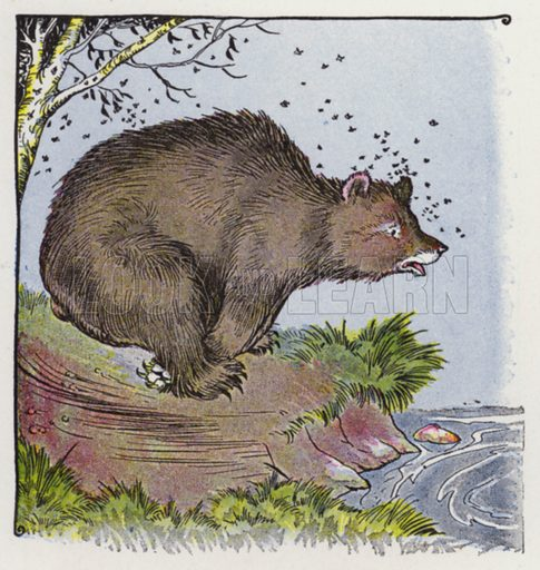 The Bear and the Bees. Illustration for The Aesop for Children with pictures by Milo Winter (Rand McNally, 1919).