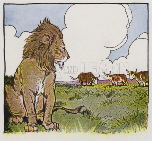Three Bullocks and a Lion. Illustration for The Aesop for Children with pictures by Milo Winter (Rand McNally, 1919).