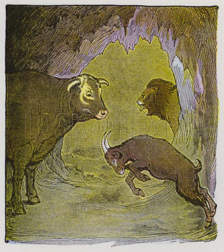 The Bull and the Goat. Illustration for The Aesop for Children with pictures by Milo Winter (Rand McNally, 1919).