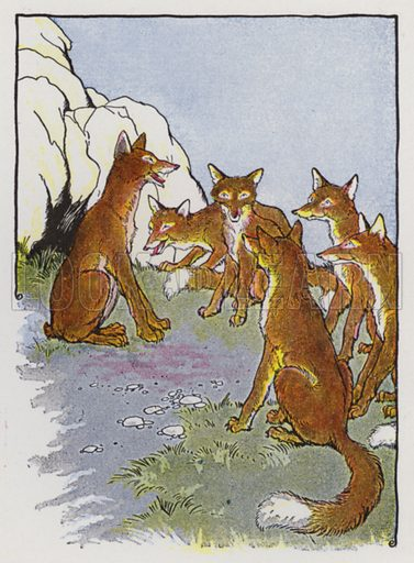 The Fox Without a Tail. Illustration for The Aesop for Children with pictures by Milo Winter (Rand McNally, 1919).
