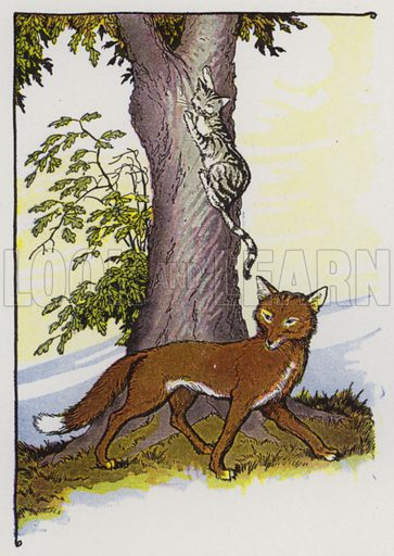 The Cat and the Fox. Illustration for The Aesop for Children with pictures by Milo Winter (Rand McNally, 1919).