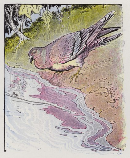 The Ant and the Dove. Illustration for The Aesop for Children with pictures by Milo Winter (Rand McNally, 1919).